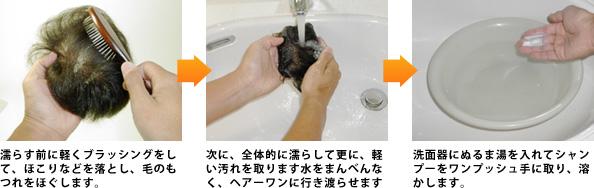 濡らす前に軽くブラッシングをして、ほこりなどを落とし、毛のもつれをほぐします。次に、全体的に濡らして更に、軽い汚れを取ります水をまんべんなく、ワンズヘアーに行き渡らせます。洗面器にぬるま湯を入れてシャンプーをワンプッシュ手に取り、溶かします。