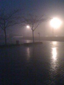 すごい霧です