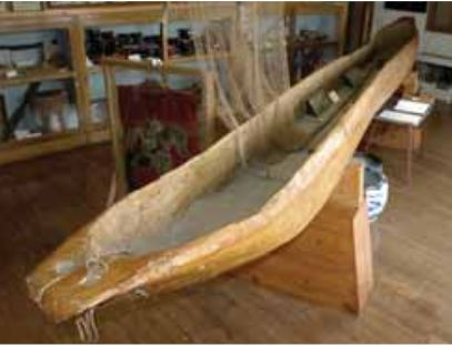 カツラの木から造船